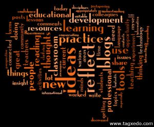 What do you gain from using blogs for professional development?
