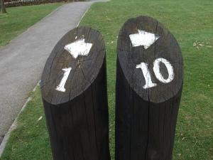 10 + 1