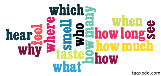 Questions and senses word cloud
