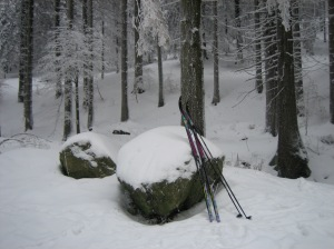 The only place I was happy for my skis to be