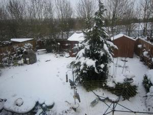 Snow on Christmas Day!