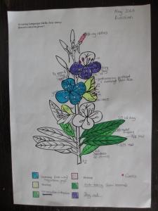 Language learning flower