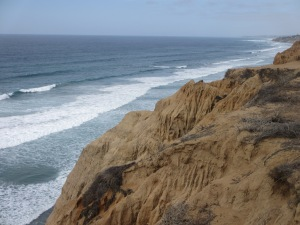 Torrey Pines Nature Reserve, San Diego