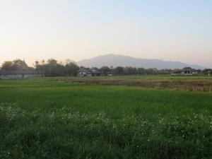 The mountain near Chiang Mai and Wat Pha Sukaram