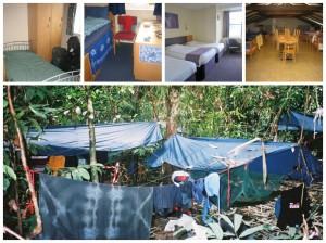 Jungle, summer school, hotel and hostel
