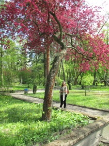 Mum in the botanic garden under a tree covered in red blossom