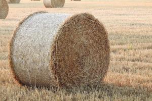 A straw bale