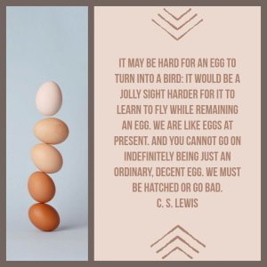 It may be hard for an egg to turn into a bird: it would be a jolly sight harder for a bird to learn to fly while remaining an egg. We are like eggs at present. And you cannot go on indefinitely being just an ordinary, decent egg. We must be hatched or go bad.