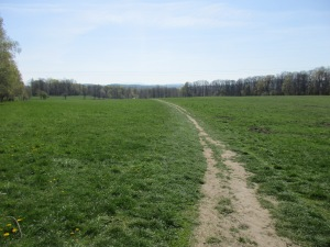 Path from the Palmiarnia to Ksiaz Castle